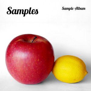 Sample Album